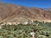 Blick über einen großen Palmenhain auf das gegenüberliegende rötliche Gebirge, Oman