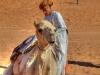 Ein Beduine mit Kopftuch sattelt sein Kamel in der Wahiba Sands-Wüste im Oman