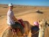 Wüstenschiffe. Nikki auf einem Kamel, das von einem Beduinen geführt wird. Wahiba Sands, Oman