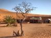 Das Nomadic Desert Camp in der Wahiba Sands-Wüste im Oman ist liebevoll gestaltet.