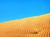 Stahlblauer Himmel über goldener Sanddüne mit Wüstengras, Oman