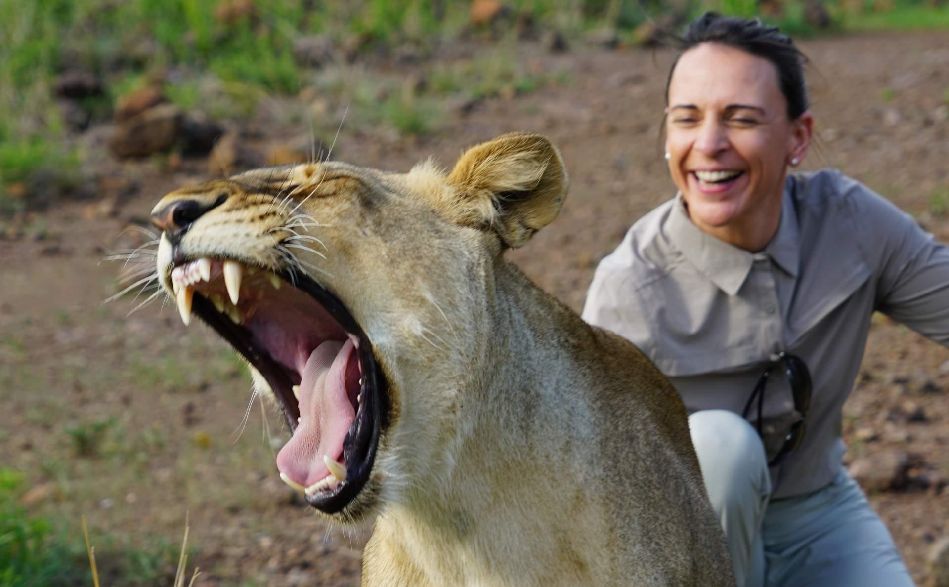 Lions Walk Zimbabwe Nikki Bralo-min