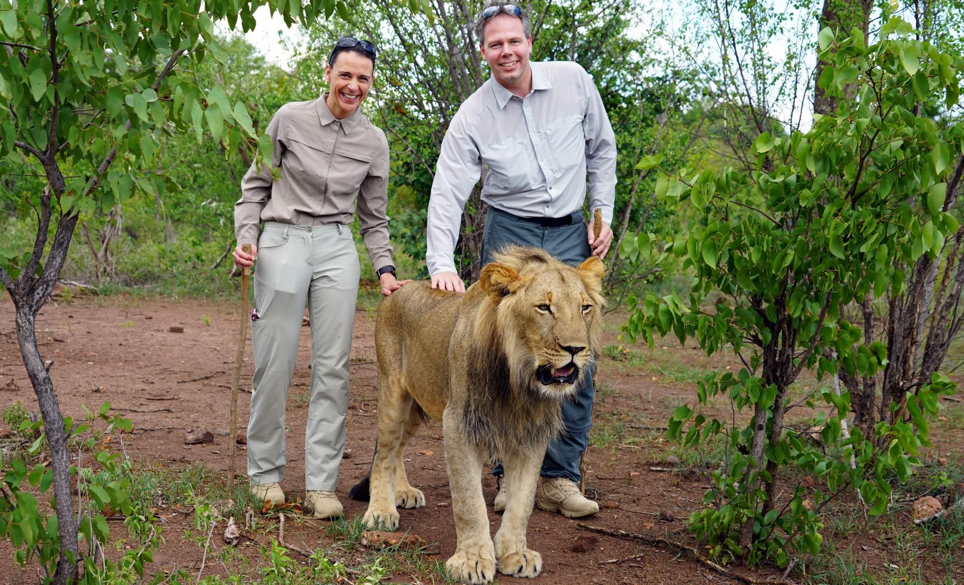 Nikki und Michi spazieren mit Löwen-min