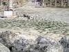 2005jordanien-004