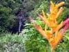 hawaii_2006_112