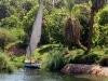 Die Feluke ankert am Ufer des dicht bewachsenen Nilufers. Das Nilstück zwischen Edfu und Kom Ombo zählt zu den malerischsten Teilen des großen Stroms. Foto: www.nikkiundmichi.de