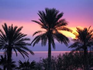 Sonnenuntergang am Toten Meer. Mit 400 Metern unter dem Meeresspiegel der tiefste Punkt der erde. Foto: www.nikkiundmichi.de