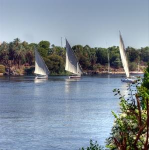 Feluken segeln auf dem Nil in Assuan, Ägypten. Foto: www.nikkiundmichi.de