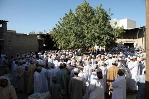 Reisebericht Oman: Der Tiermarkt in Bahla folgt seit Hunderten Jahren den gleichen Ritualen. Hier werden vor allem Ziegen gehandelt. Foto: Michael Dunker