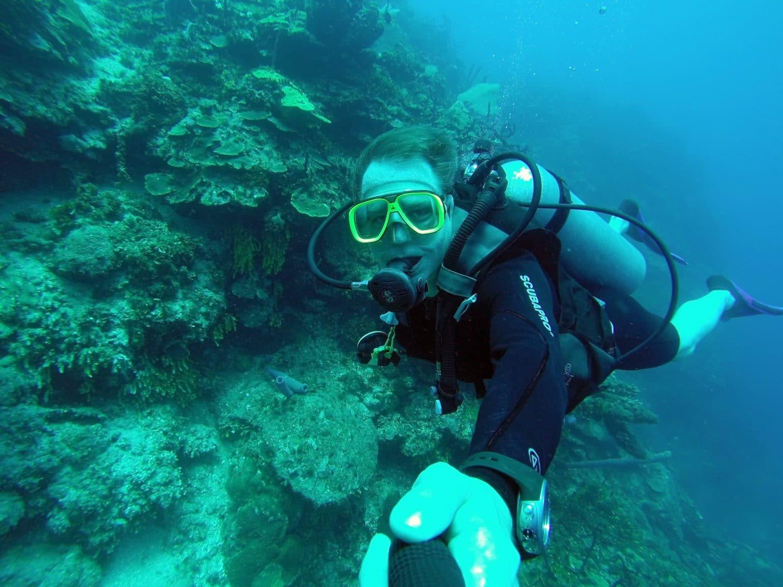 Tauchen Catalina Island DomRep