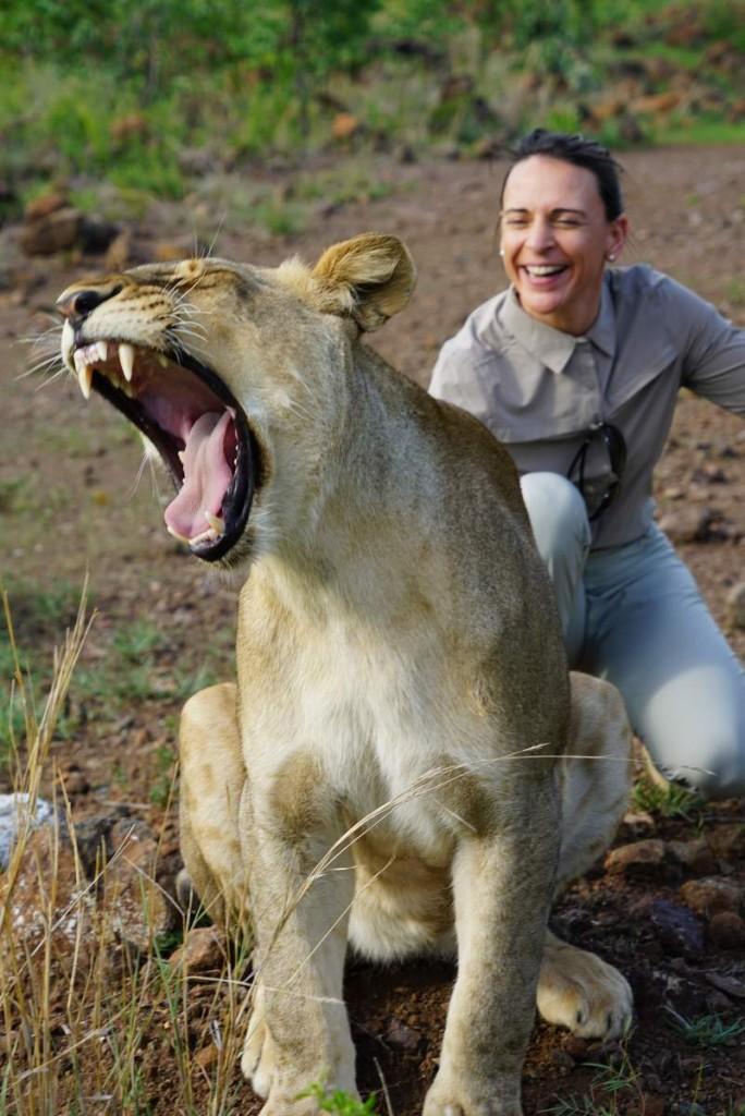 Nikki streichelt die Löwin