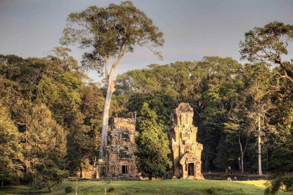 Angkor Thom: Die Abendsonne taucht die Ruinen in einen goldenen Schein.
