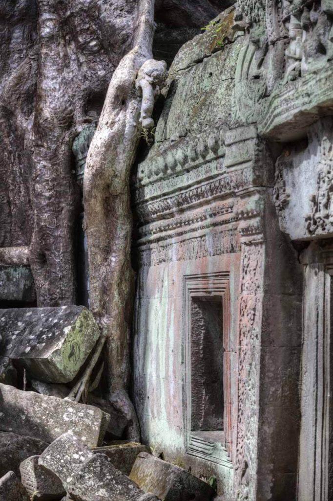 Die Ruinen von Ta Prohm wurden von den Forschern weitgehend so belassen, wie sie sie vorgefunden hatten. Das macht den Charme des Ortes aus.