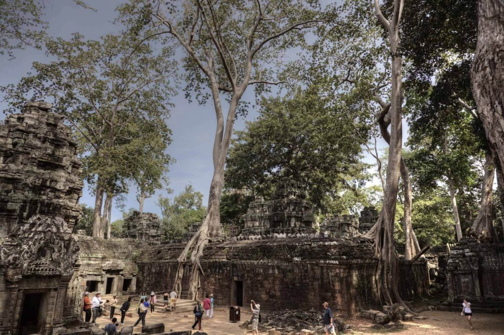 Ta Prohm - eine der schönsten Locations in Angkor. Ta Prohm war Schauplatz des Actionsfilms Tom Raider - Lara Croft, mit US-Megastar Angelina Jolie.