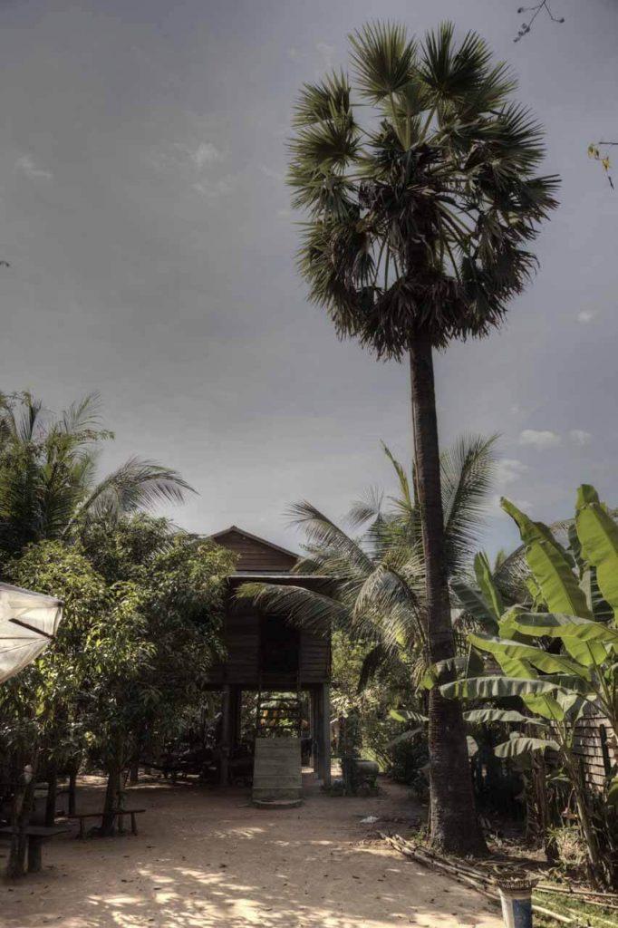 Zwischenstopp in einem kleinen Dorf nördlich von Siem Reap. Hier sind die Menschen sehr arm, leben hauptsächlich vom Reisanbau.