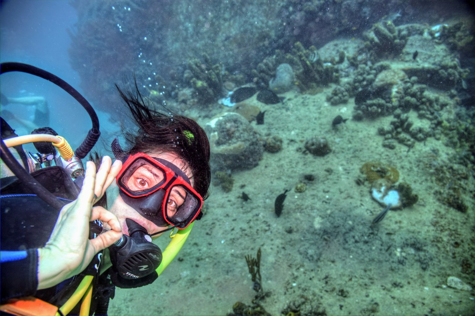 Wrack Tauchgang Antilla Aruba 02