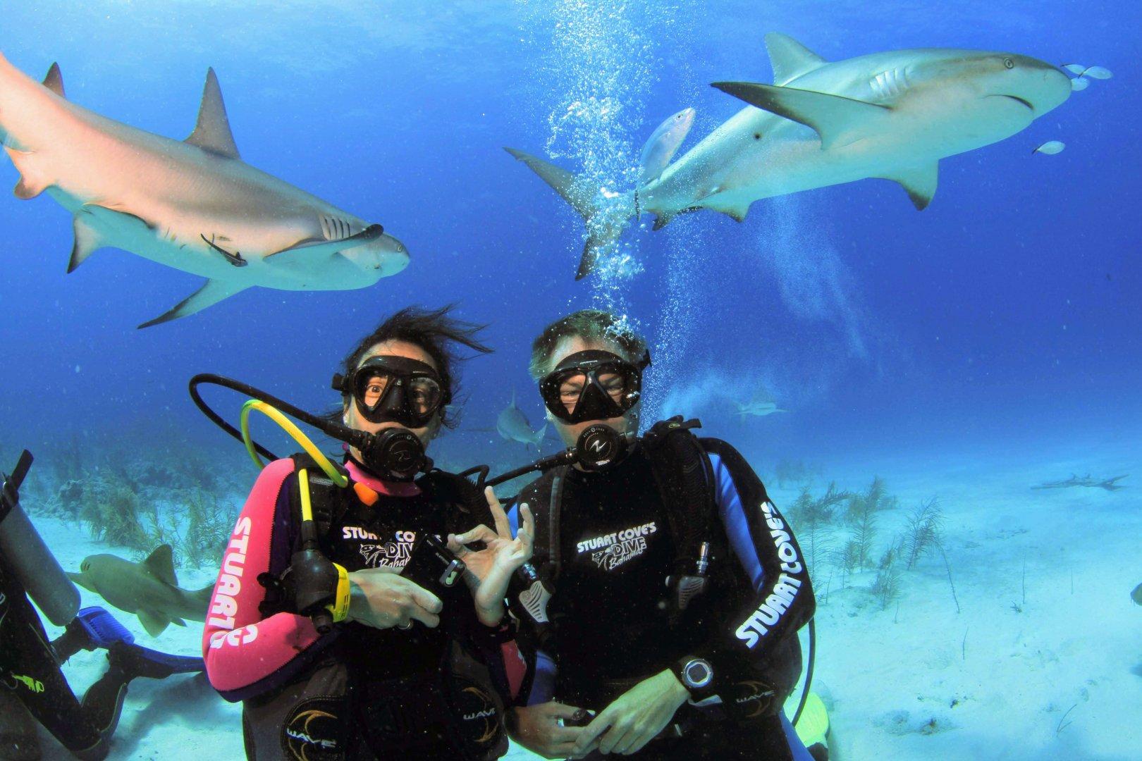 Haitauchen Bahamas Nikki und Michi Dunker