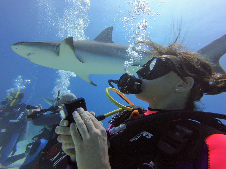 Nikki Bralo Dunker beim Tauchen mit Haien