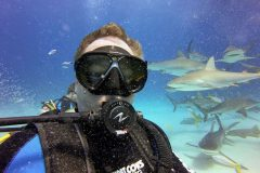 Haifütterung: Michael Dunker