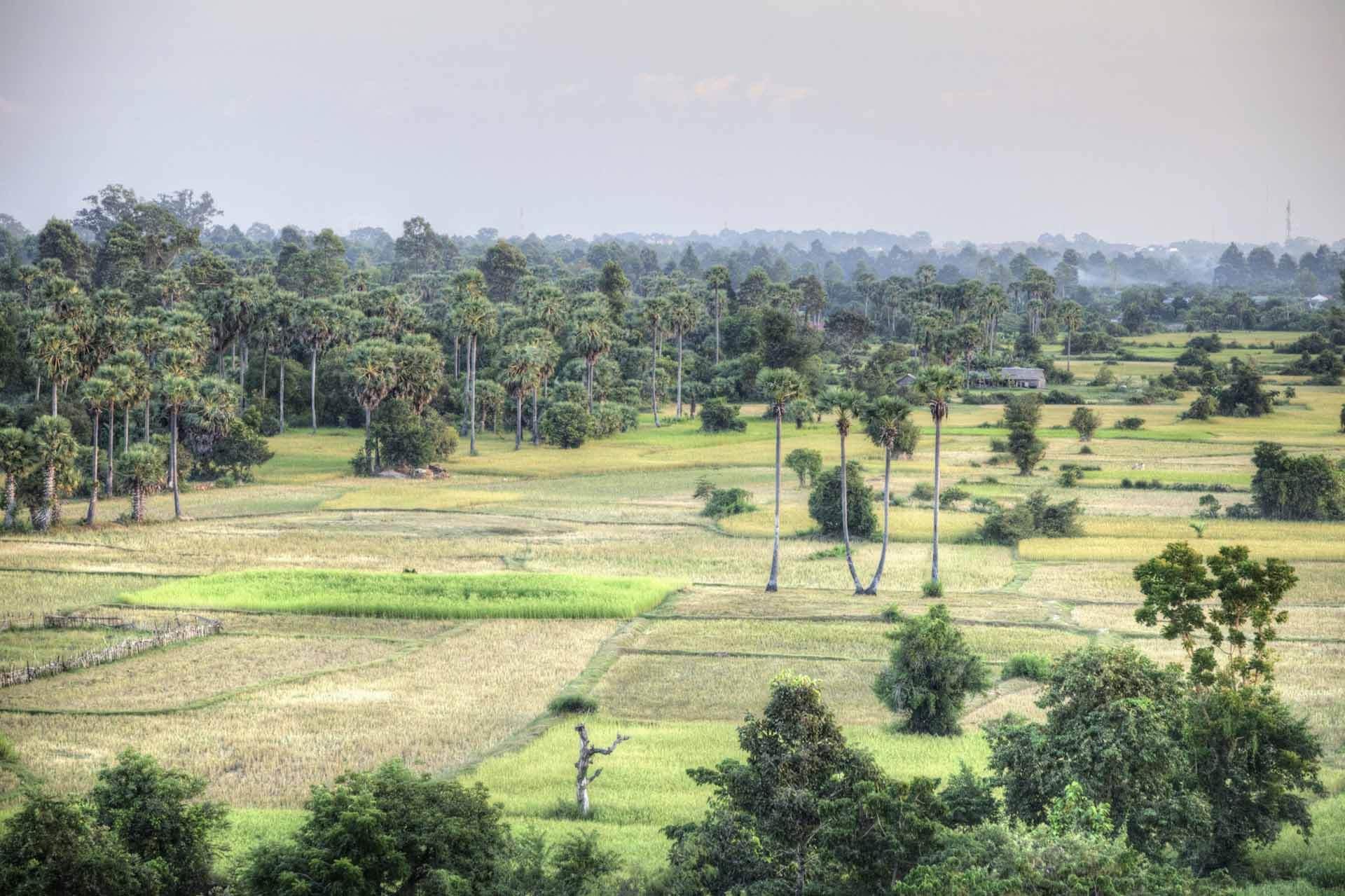 Kambodscha_Angkor_041