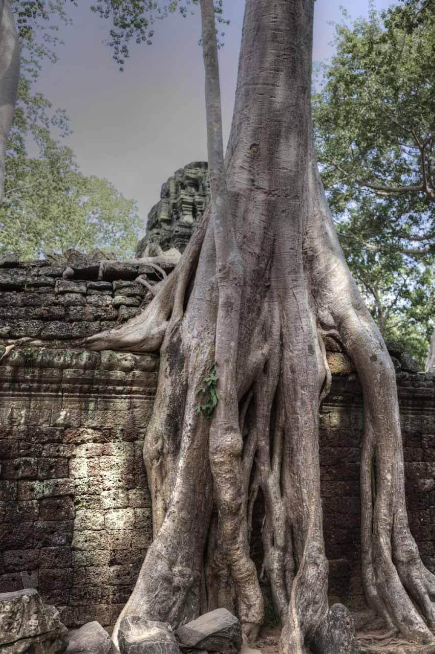 Kambodscha_Angkor_090