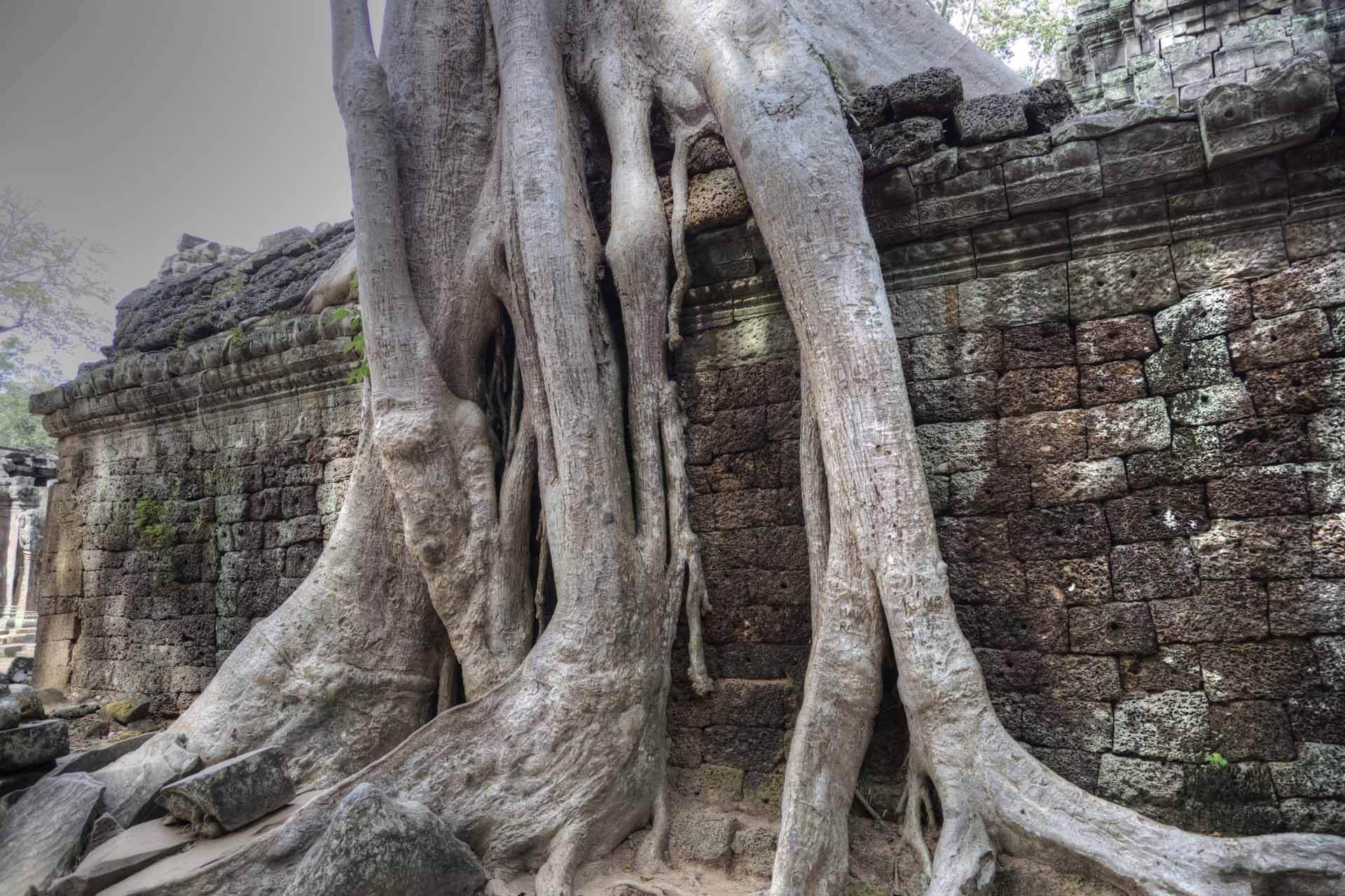 Kambodscha_Angkor_091