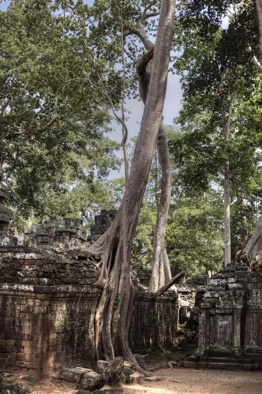 Kambodscha_Angkor_093