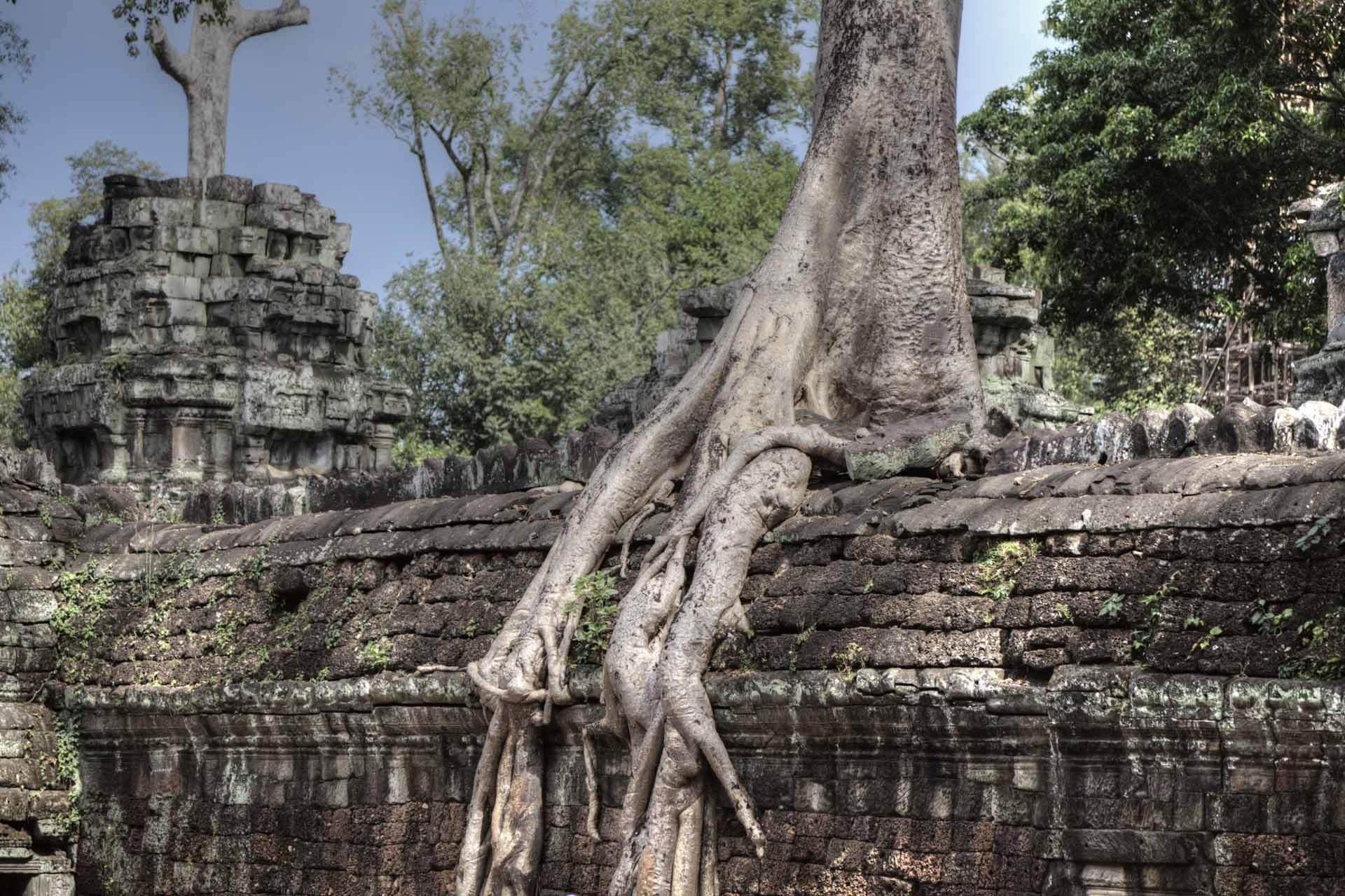 Kambodscha_Angkor_094
