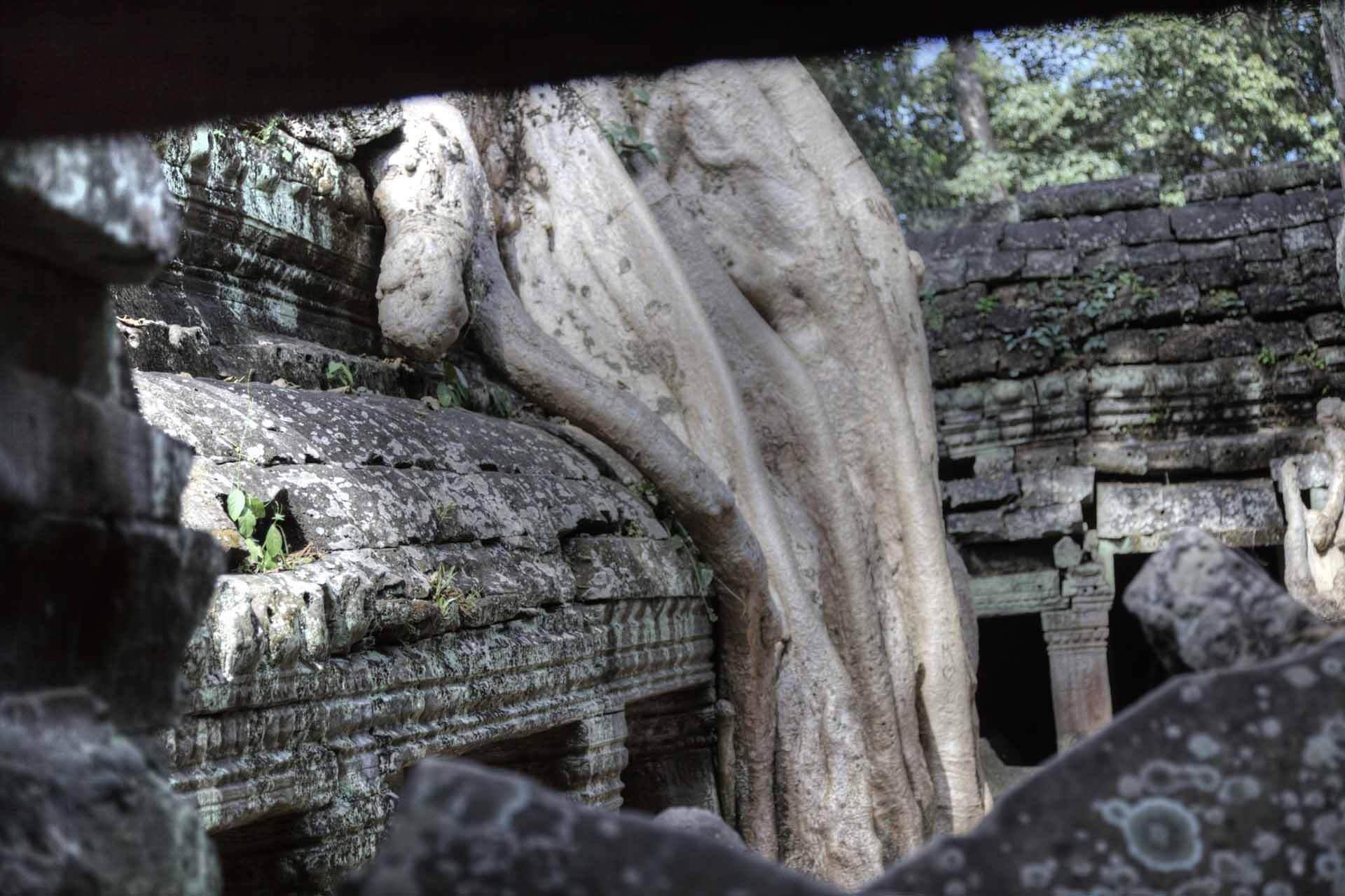 Kambodscha_Angkor_098