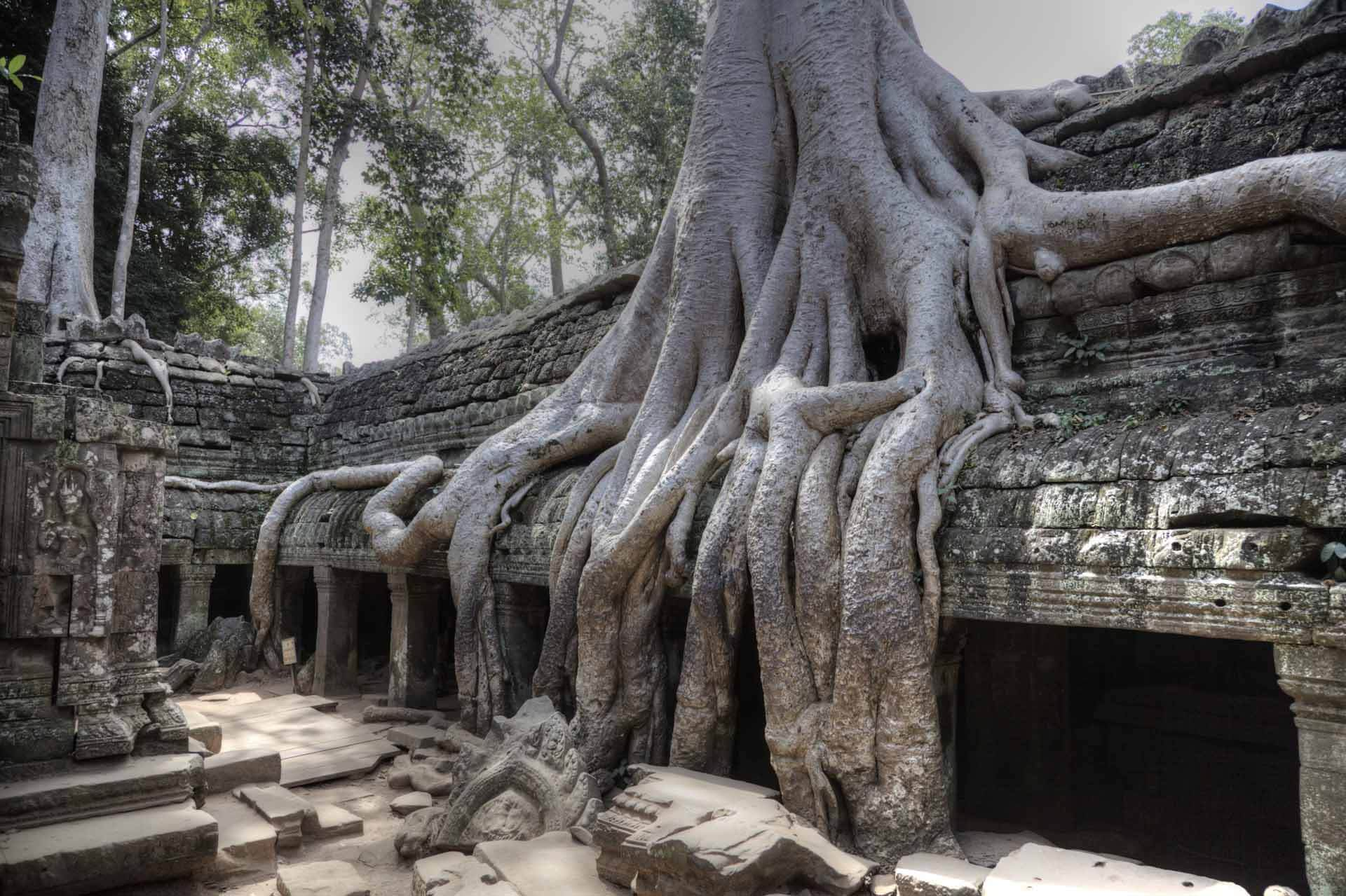Kambodscha_Angkor_099