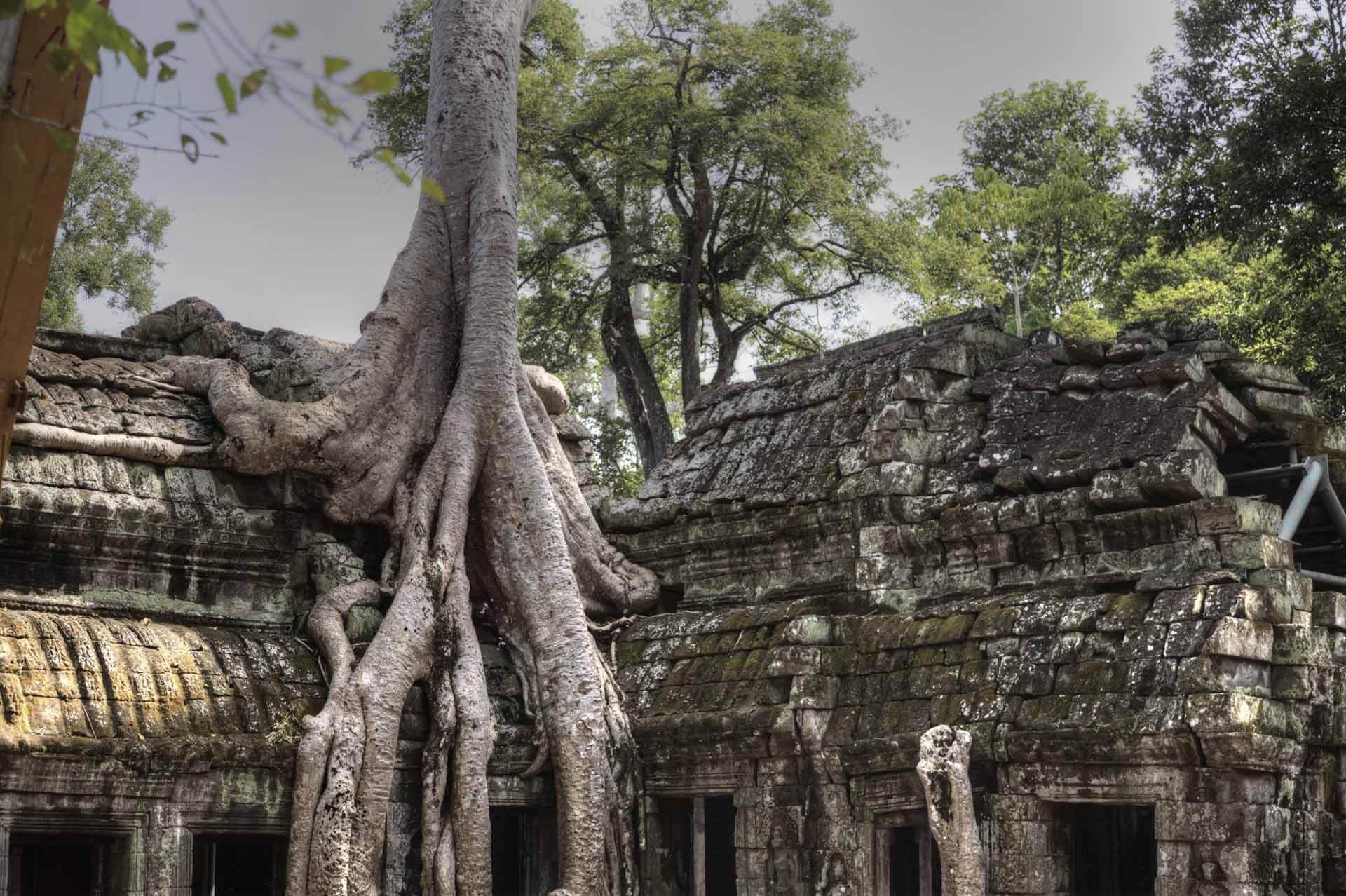 Kambodscha_Angkor_108