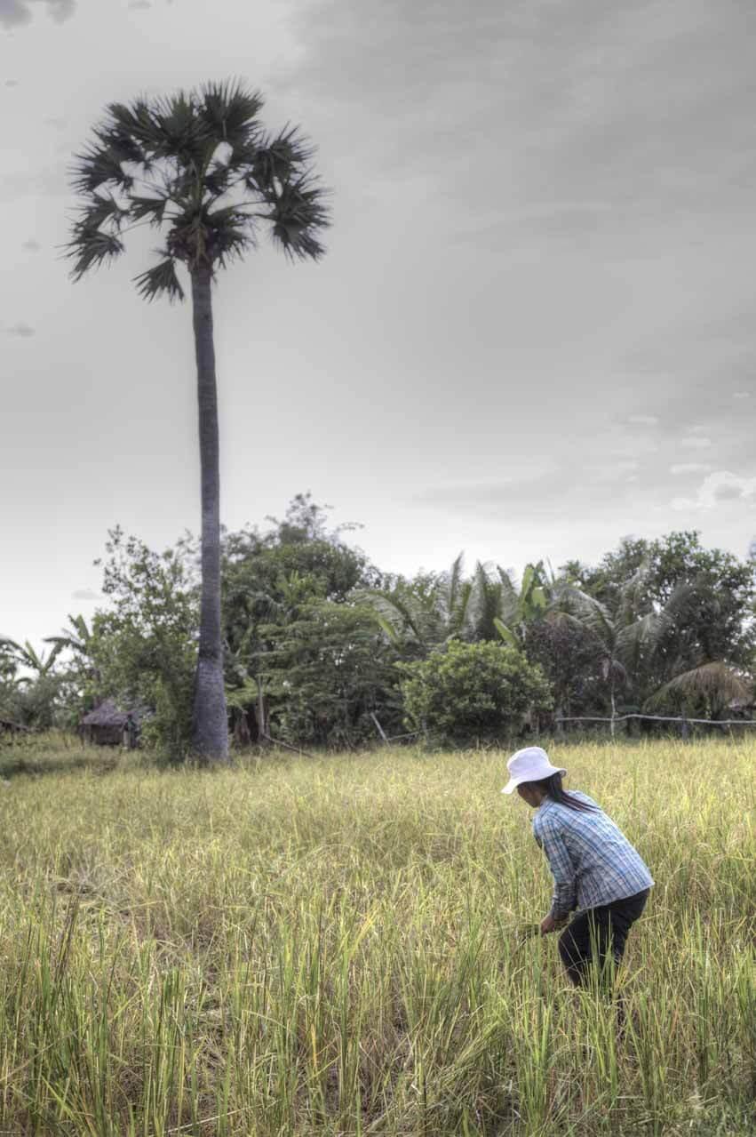 Kambodscha_Angkor_120