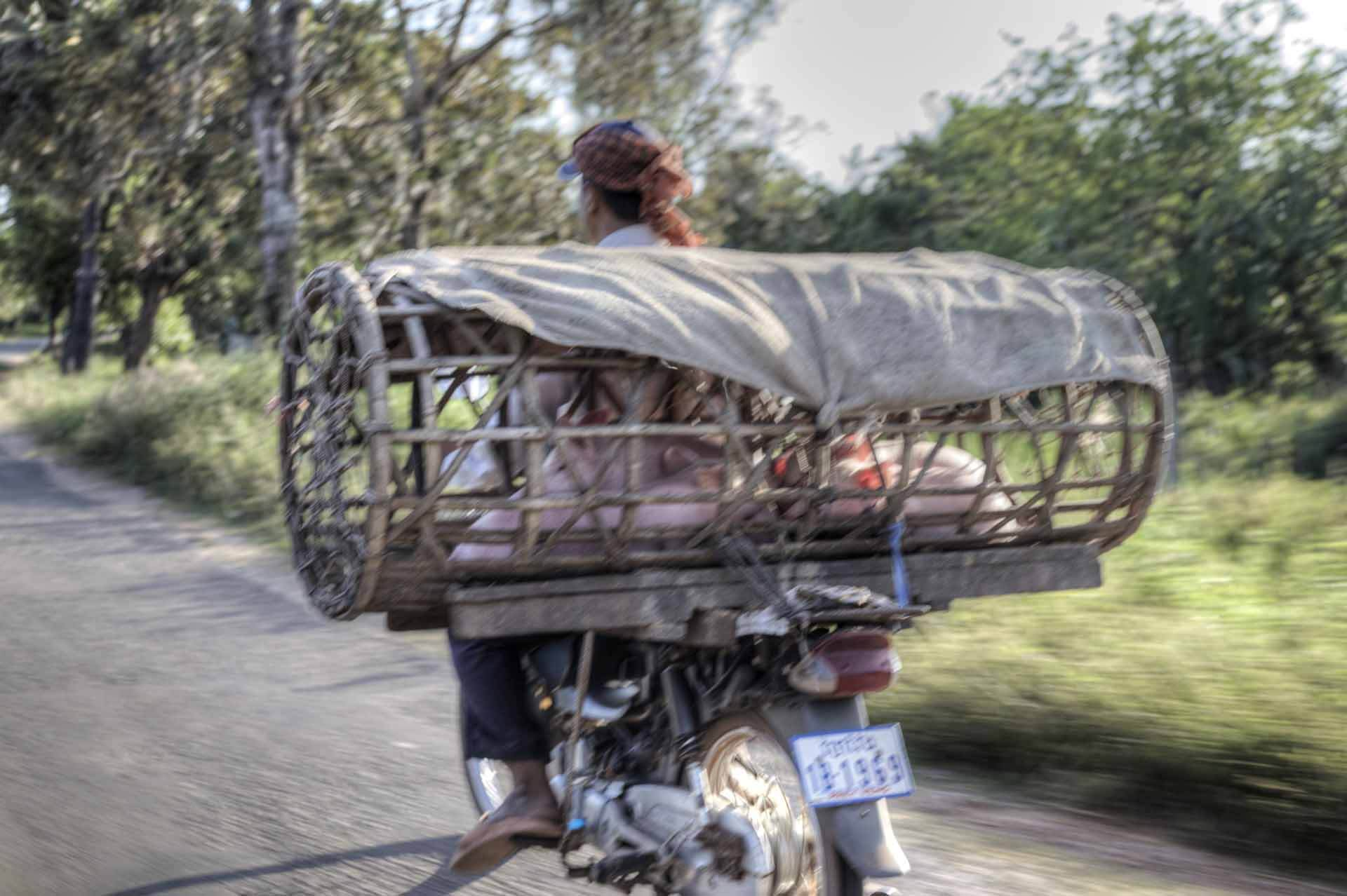 Kambodscha_Angkor_138