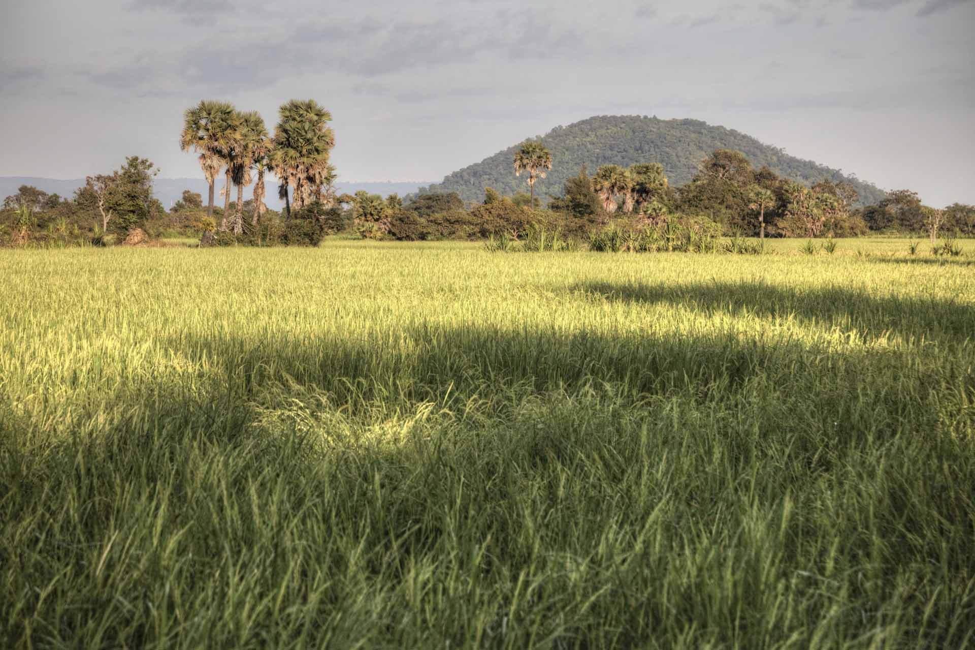 Kambodscha_Angkor_144